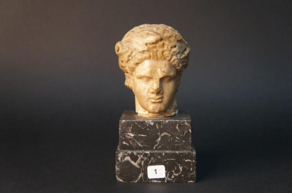 Tête juvénile provenant probablement d'une statue représentant le dieu Bacchus.  -[...]