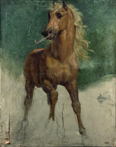 Pascal François GERARD dit BARON GERARD (Rome 1770-Paris 1837) Etude pour le cheval[...]